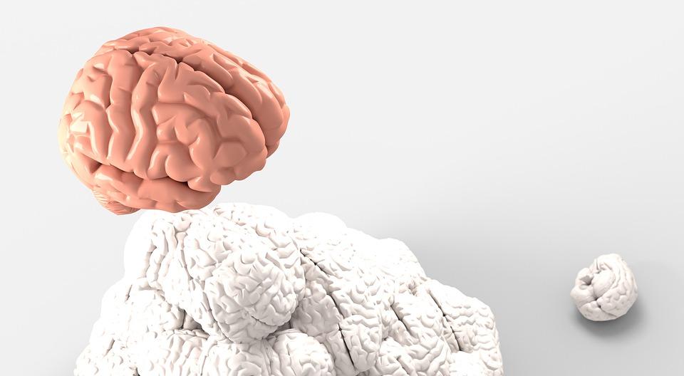 Le rôle que jouent les psychologues dans les problèmes de santé divers