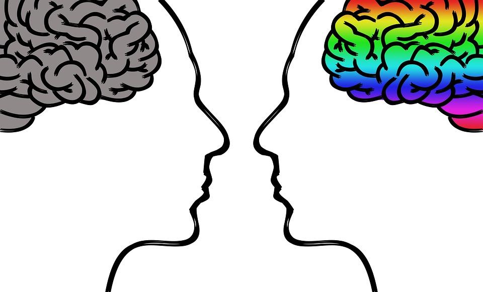 Les autres branches de la psychologie : Psychologie de la réadaptation et Psychologie pédiatrique